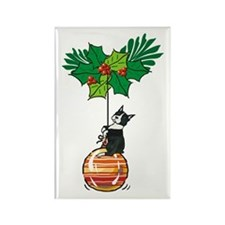 Boston on Ornament Rectangle Magnet (100 pack)