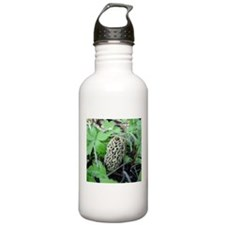 Yellow Morel Mushroom Water Bottle