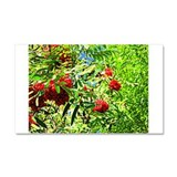 Rowan berries Car Magnet 20 x 12