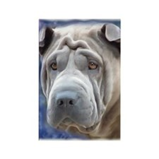 Alert Blue Chinese Shar Pei Rectangle Magnet