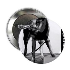 "Nosework search for birch Malinois 2.25"" Button"