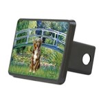 SFP-Bridge - Australian Shepherd (red merle.png Re