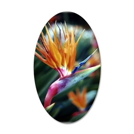 Bird of Paradise 35x21 Oval Wall Decal