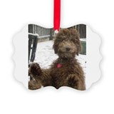 Cute Labradoodle Picture Ornament