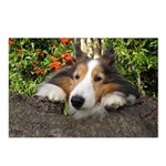 Squishy Face Postcards (Package of 8)