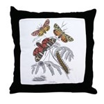 Moth Insects Throw Pillow
