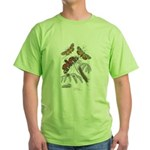 Moth Insects Green T-Shirt