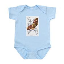 Dorycampa Regalis Moth Infant Creeper