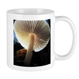 Cute Mycologist Mug
