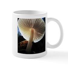 Unique Bolete Mug