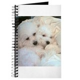BICHONS IN LOVE JOURNAL