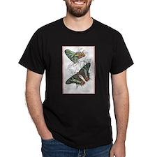 Madagascar Butterflies (Front) Black T-Shirt