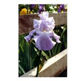 Wedgewood Iris Postcards (Package of 8)