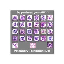 "Do You Know Your ABC's? Square Sticker 3"" x 3"""