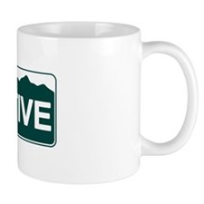 CO - Colorado - Native Mug