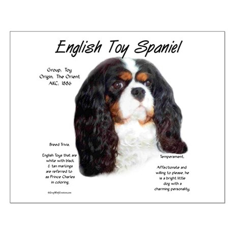 Prince Charles English Toy Small Poster