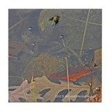 Frog in Pond Tile Coaster