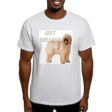 """""""Got Briard?"""" T-Shirt"""