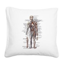 Anatomy of the Human Body Square Canvas Pillow
