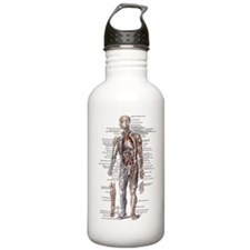 Anatomy of the Human Body Water Bottle