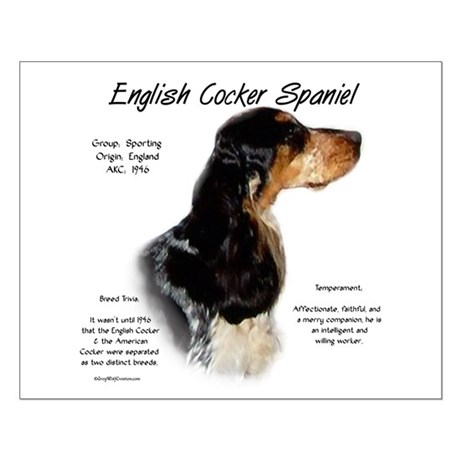 Parti Roan English Cocker Small Poster
