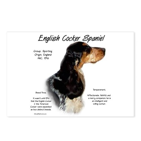 Parti Roan English Cocker Postcards (Package of 8)