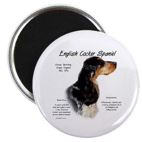 Parti Roan English Cocker Magnet