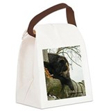 Sleeping Spectacle Bear Canvas Lunch Bag