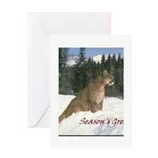 Holiday Card 1 Greeting Cards
