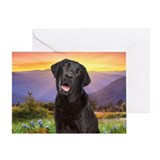 Labrador Meadow Greeting Card