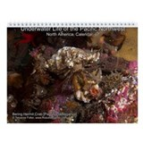North Pacific Ocean Life 2013 Wall Calendar v7