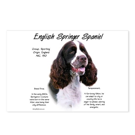 Liver English Springer Postcards (Package of 8)