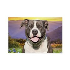 Pit Bull Meadow Rectangle Magnet (10 pack)