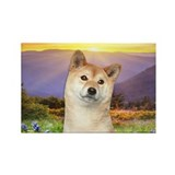 Shiba Inu Meadow Rectangle Magnet (10 pack)