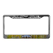 Black Powder License Plate Frame