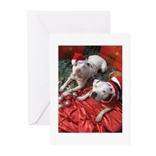 Christmas pit bull Greeting Cards (Pk of 20)