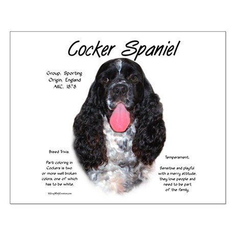 Parti b&w Cocker Spaniel Small Poster