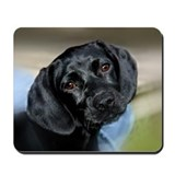 Black Labrador Retriever Puppy Mousepad