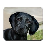 Black Labrador Puppy Mousepad