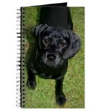 Black Lab Puppy Journal