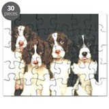 springer pups sq.png Puzzle