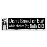 Pit Bull Don't Breed or Buy Bumper Bumper Stickers