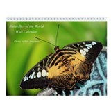 Butterflies of the World Wall Calendar, Version 2