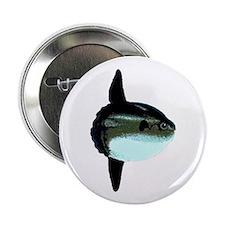"""Mola Mola - Ocean Sunfish 2.25"""" Button"""