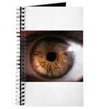 BLINDeye eye image Journal