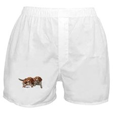Two Beagles Boxer Shorts