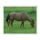 Wild horse fleece blanket Fleece Blankets