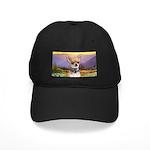 Chihuahua Meadow Black Cap