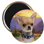 Chihuahua Meadow Magnet