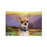 Chihuahua Meadow Rectangle Magnet (10 pack)